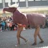 karnevalszug17