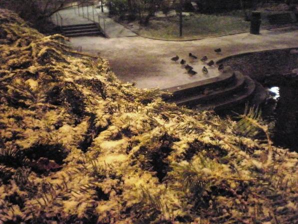 schweden_winter
