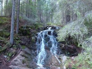 norrland-skuleskogen2