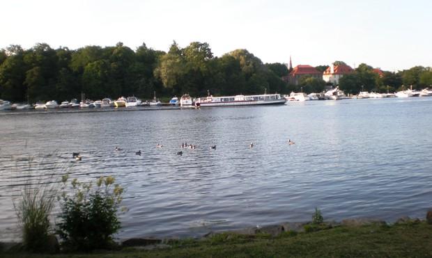 Auf Djurgården (Stadtteil Stockholms)