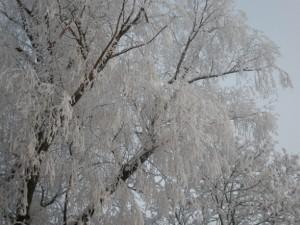 schweden-winter